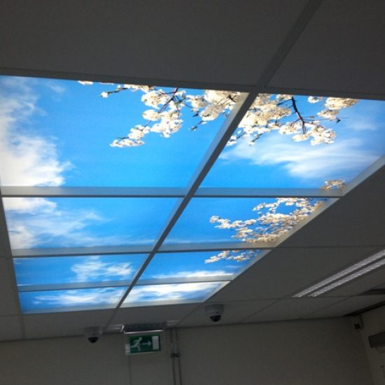 openceiling